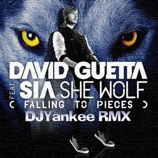 David Guetta Ft.Sia-She Wolf(Falling to pieces) DJY intro edit