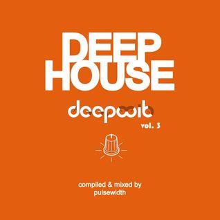 Deep House: Label Showcase DeepWit Recordings #3