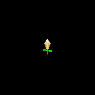 Ice Cream Rose Mix