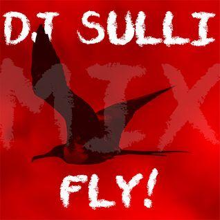 DJ SULLI - FLY! - DJ MIX