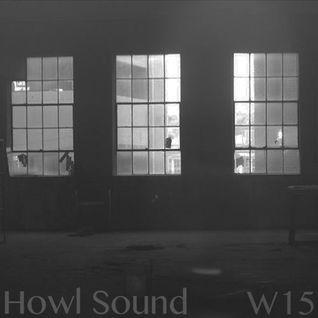 Howl Sound Basscoast W15 Mix