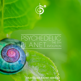 Traveler's Psychedelic Planet (The Fifth Evolution)