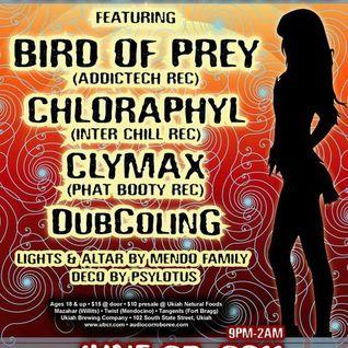 Audio Corroboree ~ 6/25/2011