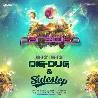 """""""Dig-Dug & Sidestep at Paradiso 2014"""" /// 06-28-14"""