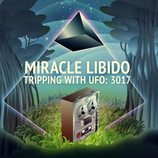 Trippin' with UFO: 3017