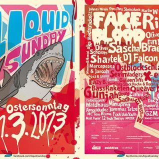 "Compact Grey - DJ Set at ""Liquid Sunday"" Alte Wollspinnerei, Altenburg (Mar 31, 2013)"
