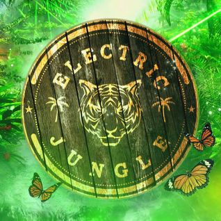 WarmUp @ Electric Jungle party (Garage, Lüneburg) - 11.06.2016