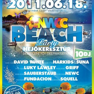 daveakadw live @ beach pary hejőkeresztúr 2011.06.18