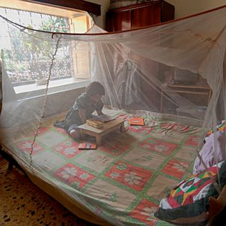 Eliminating malaria with determination, not just hope