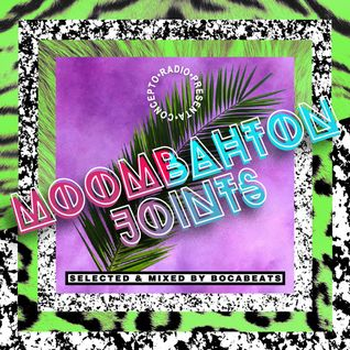Concepto Radio presents Moombahton Joints