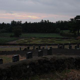 weather report #06 - graveyard at dawn