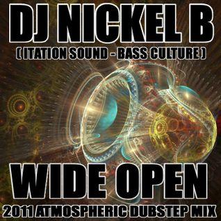 Wide Open - 2011 Atomospheric Dubstep by DJ Nickel B