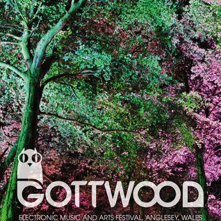 GOTTWOOD MIX 2011