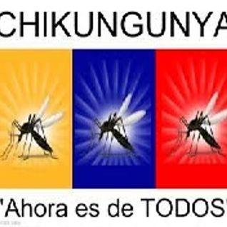 Yhare - No More Chikunyunga Promo Noviembre 2014 Set.