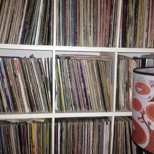 Whilst My Vinyl Gathers Dust (New HOUSE Mix)