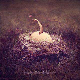 Circuncelion - Begotten - Forgotten