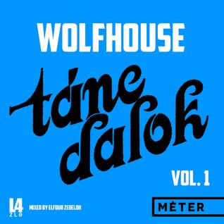 MASH5 - Wolfhouse Táncdalok Vol. 1 /Nu-Disco/Club/House/