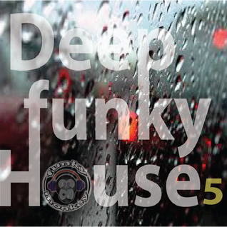Deep House 5