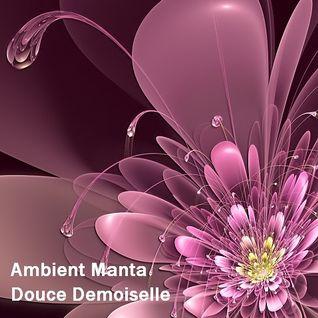 Ambient Manta - Douce Demoiselle