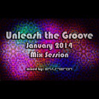 Unleash The Groove 02 - January 2014