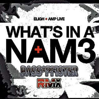 "Eligh+Amp live-""Whats In A Name""(Bass☆Pfister RMX)"