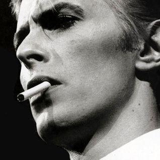 Ziggy Bowiez & Stardust Girlz
