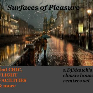 Surfaces of Pleasure (a DJMauch's classic house remixes set)