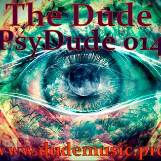 PsyDude 014