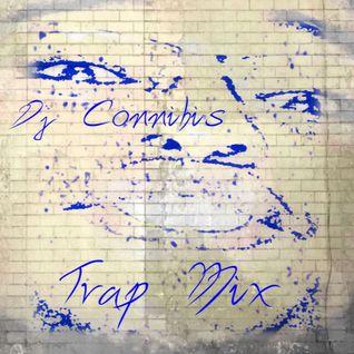 Trap MiniMix
