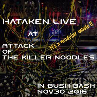 Hataken - Live  at  Attack  of  the killer noodles  in Bush Bash !