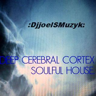 DEEP CEREBRAL CORETEX mix vol 107