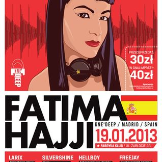 LARIX - Electronic Festiwal 19.01.2013 / Krakow / Poland