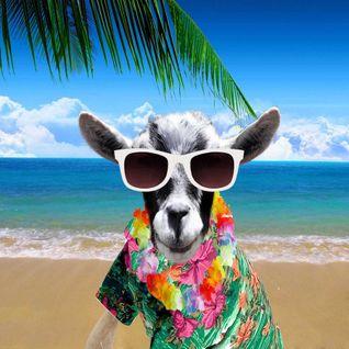 Dj Mauri Maori _-_the Year of the Goat_ Dic.2015