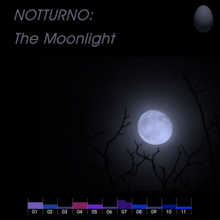 #001 NOTTURNO Part 1: The Moonlight