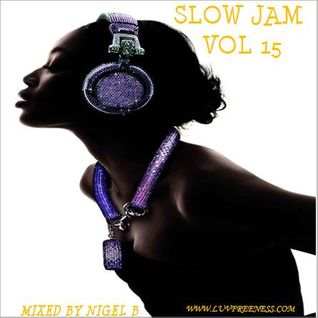 NIGEL B (SLOW JAM 15)(IN THE MIX)