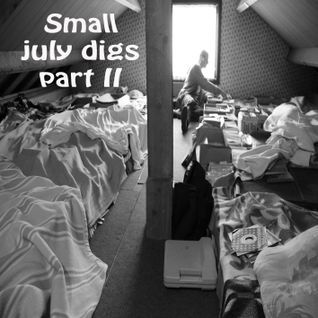 Small july 2011 digs ; the attic part II