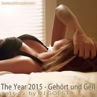 DJ Gösta - Gehört und Geil - The year 2015 (House Set 2015-12)