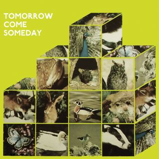 Tomorrow Come Someday