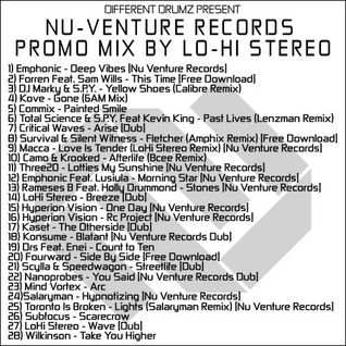 Nu Venture Records July 2013 Mix by LoHi Stereo