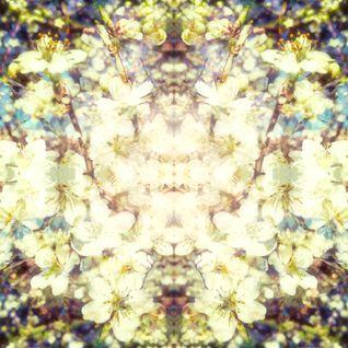 Springtime Synesthesia