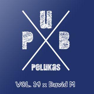 Pub Pelukas vol.14 - David M