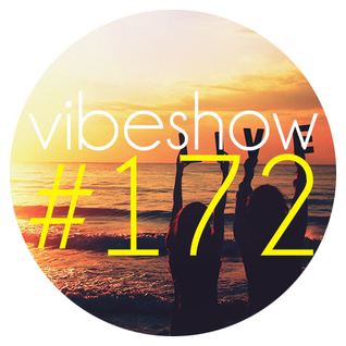 Paul Damixie`s Vibeshow #172