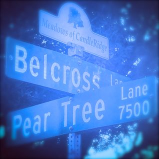 The Belcross Sessions no. 5