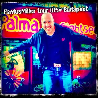 BY FlaviusMiller Pure House March 2015