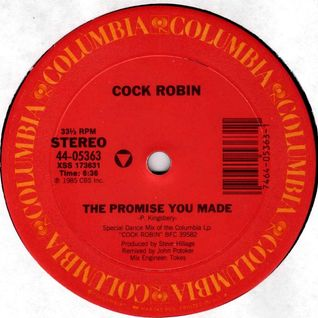 anni 80 .COCK ROBIN - THE PROMISE YOU MADE