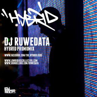 Ruwedata - Hybrid 10th edition Promomix