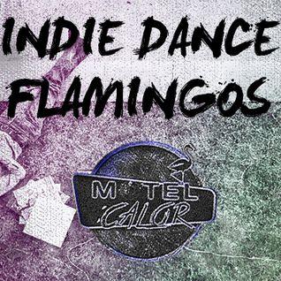 Motel Calor - Indie Dance Flamingos (Octubre 2014)