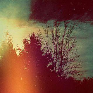 Sentient Timbres