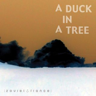 A Duck in a Tree 2013-06-29 | Above It All, the Tenth Crystal Sphere