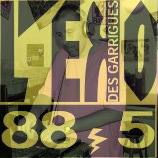DJW - Mix @ Radio Eko des Garrigues  180715